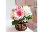 Juno flower studio
