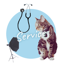 Service & others