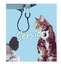サービス&その他