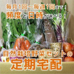 自然栽培のおまかせ野菜セット定期宅配