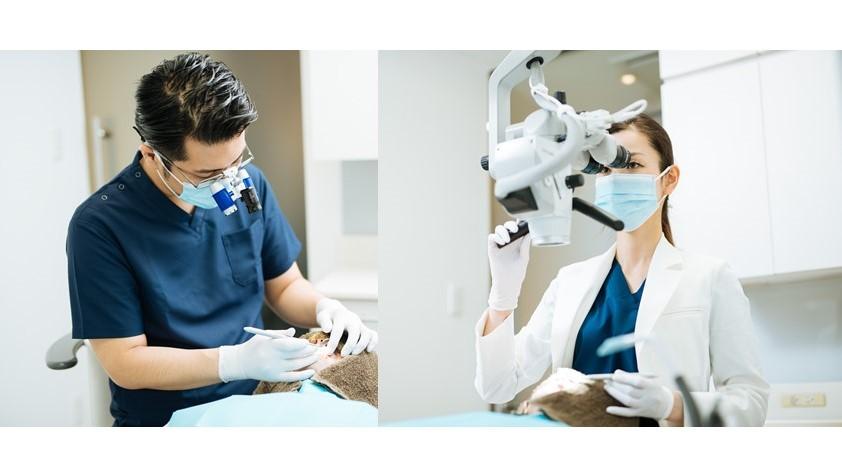 三好歯科 自由が丘の二人の歯科医師の治療風景